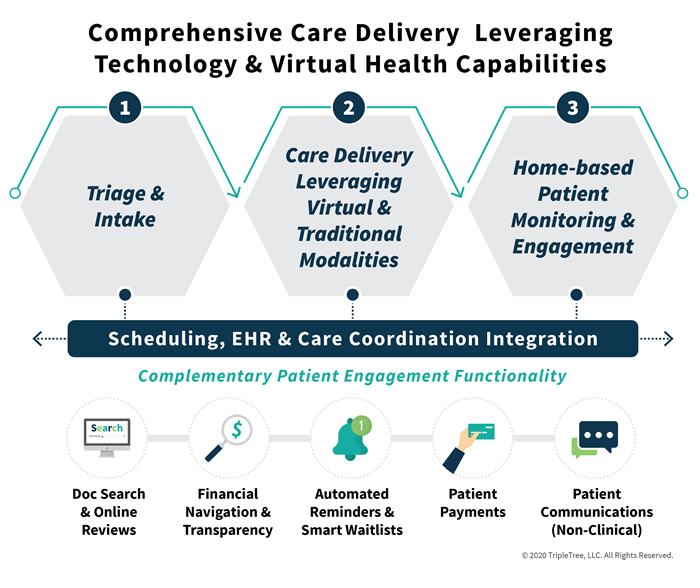 Virtual-Health-Care-Delivery_1-(1).png